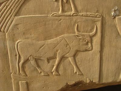 Az Erős Bika (az öt királynév közül az első kezdete)
