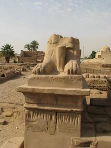 II. Ramszesz egyik (eredetileg kosfejű) szfinxe