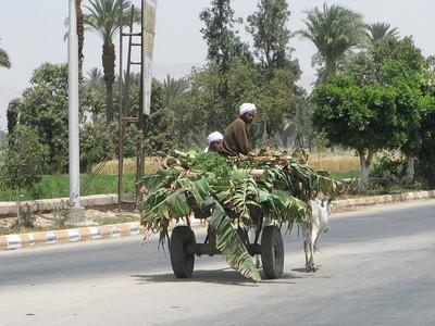 Banánlevél-szállítás