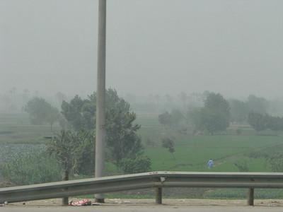 Kairó a buszból - a legkisebb zöldterületet is azonnal beültetik