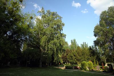 Garden of Zephyrus