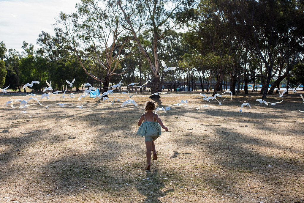 Olivia scatters the Cockatoos. Olivia's family have hit on hard times and are homeless.