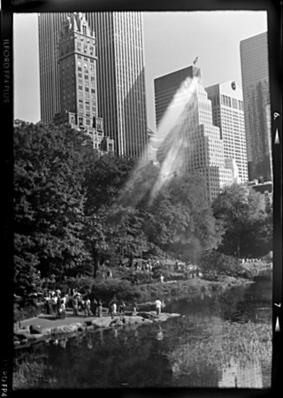 NY 2010 Central Park Lake