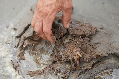 deepwater-horizon-bp-oil-spill-ecological-disaster-photography-jordan-bush-photojournalism-17