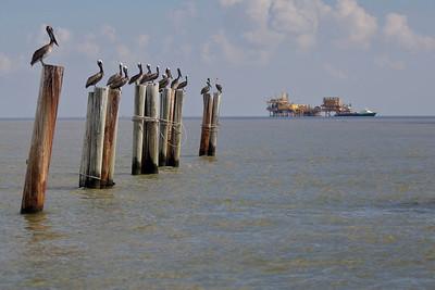 deepwater-horizon-bp-oil-spill-ecological-disaster-photography-jordan-bush-photojournalism-4