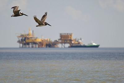 deepwater-horizon-bp-oil-spill-ecological-disaster-photography-jordan-bush-photojournalism-13