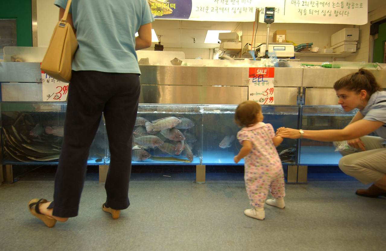 L and R- 18 month old Ocean Kwak and her mother Cinnamon Kwak looking at some live fish in a tank under the seafood counter at the Lotte Plaza Asian Market in Ellicott City. Maximilian Franz/The Daily Record  11/4/03.