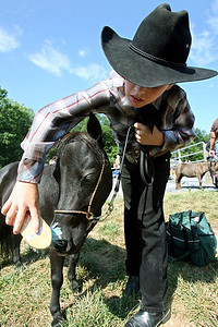"Chris Ammann/Baltimore Examiner Joshua Reese, 10, brushes off the nose of ""Raven,"" a four-year-old mare, before showing her in the Miniature Horse Show at the Howard County Fair in West Friendship on Wednesday, August 9, 2006."