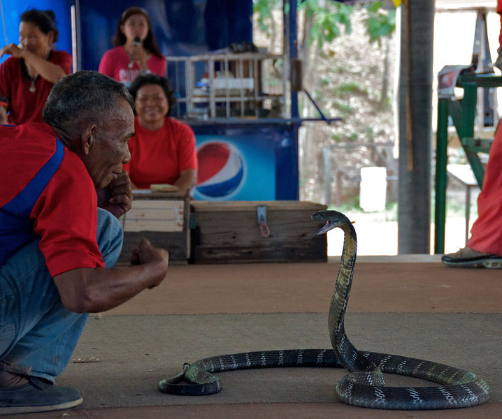 One of the snake handlers at the King Cobra Farm. The small village puts on shows (note the woman on the microphone in the background) mostly involving the men handling and mock boxing the snakes. There were also some monkeys in cages that were way too small. I'm all for supporting local endeavors and being culturally open, but the whole experience was rather sad and one of the few I wouldn't want to repeat.<br /> <br /> Ban Kok Sa-Nga (outside of Khon Kaen), Thailand