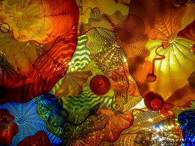 Chihuly at Richmond