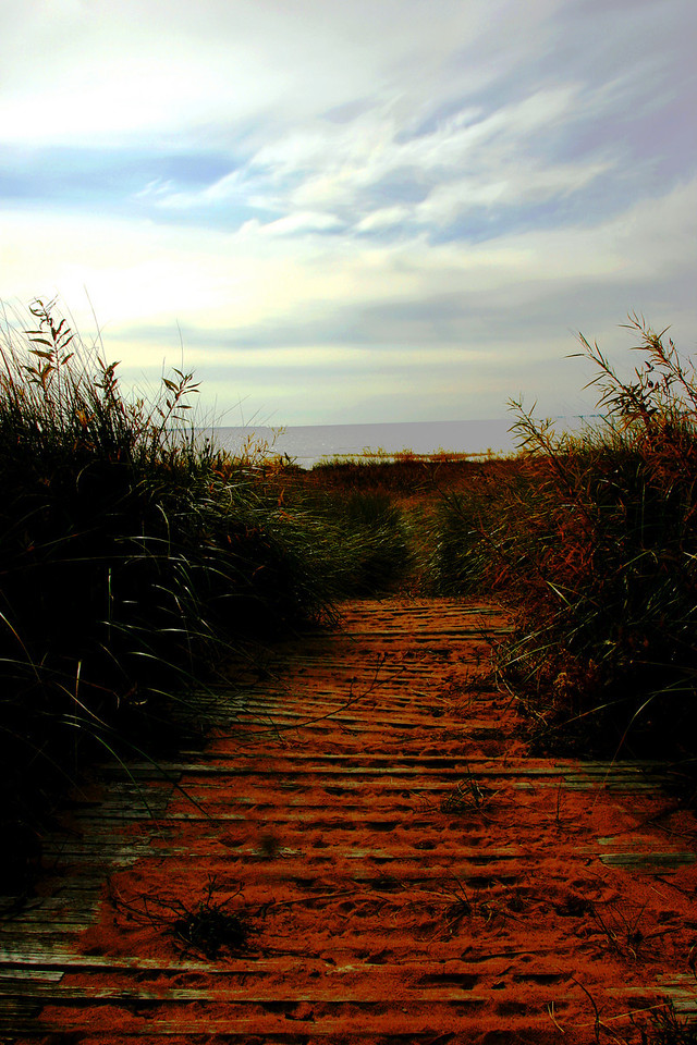 Menominee MI 10.17.10<br /> <br /> I just came across this photo the other day while going through some old files. I was looking for the Menominee Lighthouse that day when I pulled into a park just down the beach from it, this was the pathway to the beach and it caught my eye. It was an overcast day and I didn't think I was going to stop, about 20 minutes before this the clouds started to breakup. I didn't like the way the lighthouse looked or the photos I took of it, but I did get this photo. You just never know what you will find once you get out and look around!