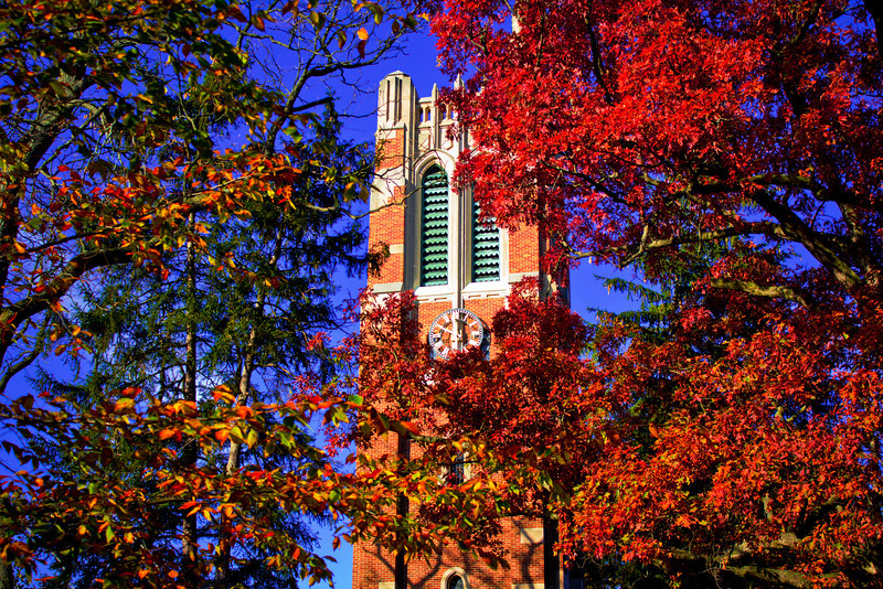 10.28.11 Michigan State Campus - Beaumont Tower<br /> <br /> I have taken hundreds of photos of Beaumont Tower, but this is my favorite. I wanted to catch the autumn leaves before they disappeared so I took a walk around campus to see what I could capture. A couple of my old stands by shots are Sparty and Beaumont. I was surprised the colors were still so vibrant. I had been in the U.P. a couple weeks ago during their peak and was lucky enough to catch the end on campus. I normally shoot Beaumont from the Library side, but on this day I spent most of my time on the Museum side and that's where I captured this shot.