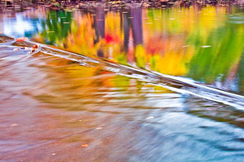 Michigan State University - Red Cedar River Autumn Reflection 2012