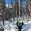 The 6th graders spent a day snowshoeing through the sunny, snowy woods on Mt. Spokane.