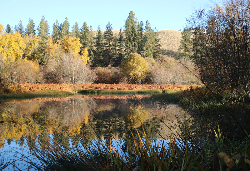 """An October morning's stillness reflects off the Little Spokane's smooth surface.  See two photo galleries of autumn colors on the Saint George's campus at <a href=""""https://saintgeorges.smugmug.com/Community"""">https://saintgeorges.smugmug.com/Community</a>"""