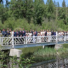 """The Class of 2018 out on a sunny Graduation Bridge waiting to begin their Graduation Ceremony on May 20, 2018.  See more candids from the start of Graduation at <a href=""""https://saintgeorges.smugmug.com/Community/Graduation-Candids-5-20-18/"""">https://saintgeorges.smugmug.com/Community/Graduation-Candids-5-20-18/</a>"""