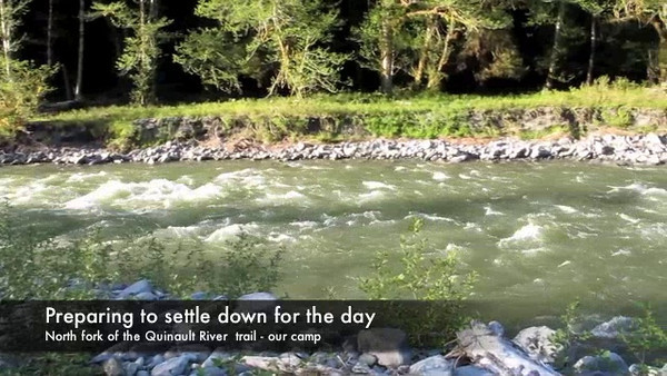 Saturday, June 4, 2011. A movie today. This was where we camped and had dinner after a 6 mile hike alongside the north fork of the Quinault River in the Olympic National Park. we were the only people in this area and we were getting ready to prepare dinner at about 7:30 pm.