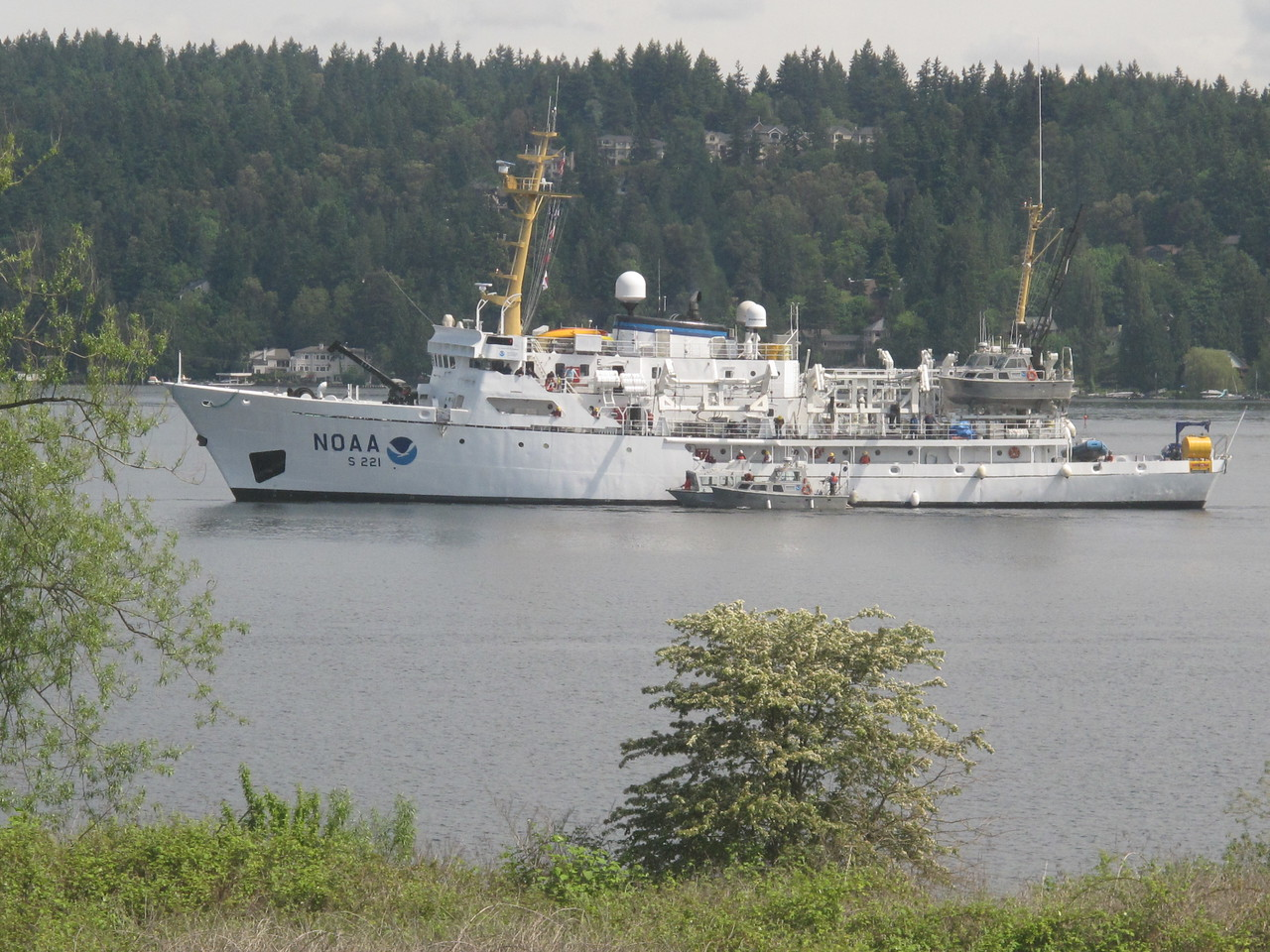 Thursday, June 9, 2011. One of NOAA's research vessels with it's work boats passes on Lake Washington in front of my office.