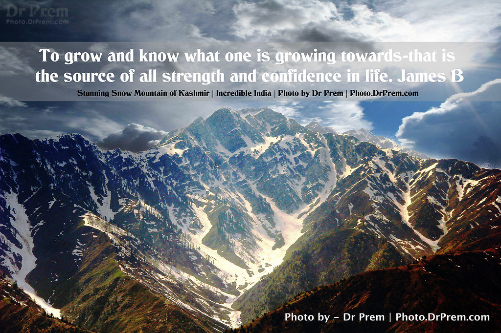 Growth of Life - Photoquote - Dr Prem