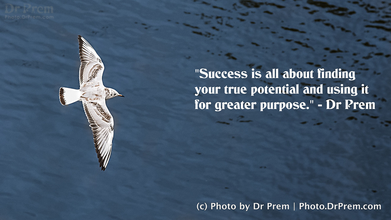 Success is about finding your true potential and using it for greater purpose - Dr Prem