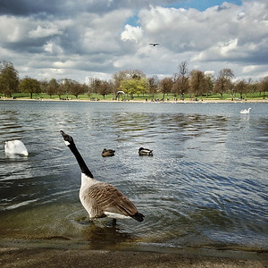 Hyde Park, London, England