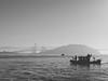 Coast Guard, Bay Bridge, San Francisco Bay Area