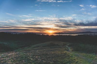 Inspiration Trail, Tilden Regional Park, Orinda, San Francisco Bay Area, California