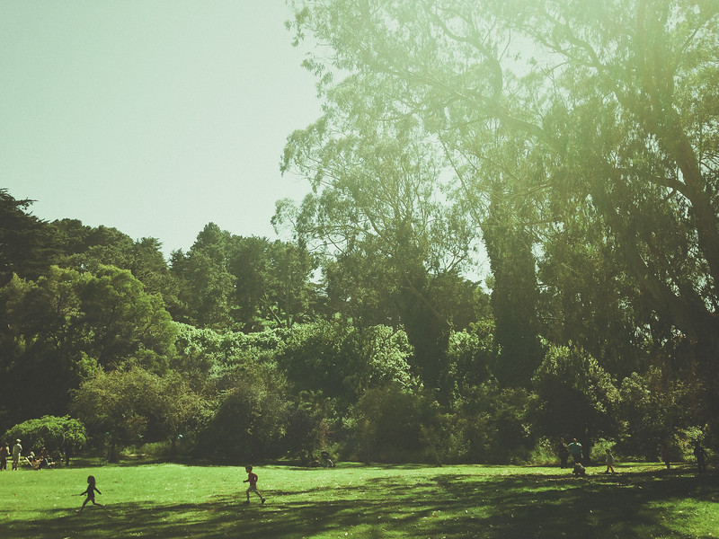 Golden Gate Park - Stow Lake Meadow
