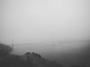 Hawk HIll, Marin Headlands, San Francisco Bay Area, California