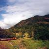 12Kuranda_Train