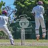 20160820_D500_Cricket_MTWvYouth_521