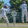 20160820_D500_Cricket_MTWvYouth_520