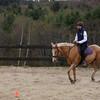 Equestrian 05-2017 018