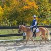 Equestrian 10-2016 027