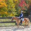 Equestrian 10-2016 025
