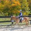Equestrian 10-2016 026