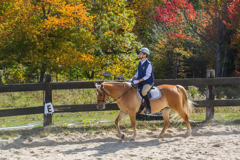 Equestrian 10-2016 015