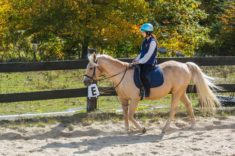 Equestrian 10-2016 017