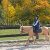 Equestrian 10-2016 028
