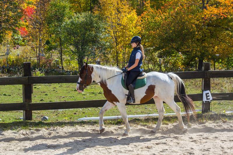 Equestrian 10-2016 014