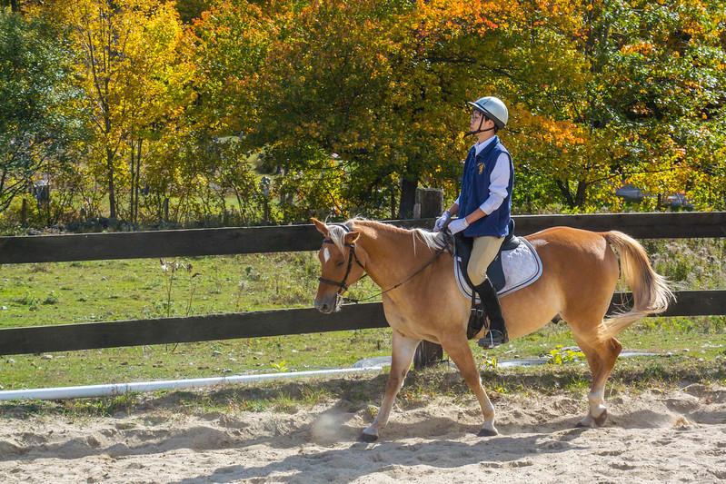 Equestrian 10-2016 016