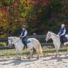Equestrian 10-2016 031