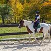 Equestrian 10-2016 013