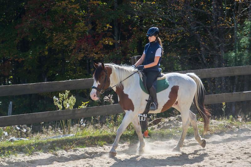 Equestrian 10-2016 021