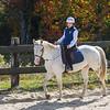 Equestrian 10-2016 019