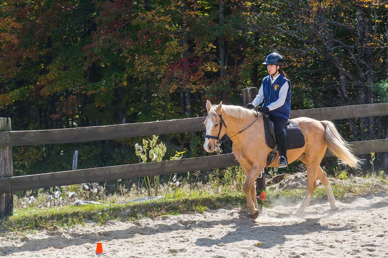 Equestrian 10-2016 018