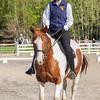 Equestrian 05-21-2017 05