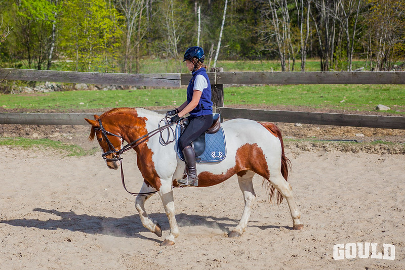 Equestrain 05-14-2018-9