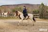 Equestrian Show 2020_018