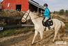 Equestrian Show 2020_011